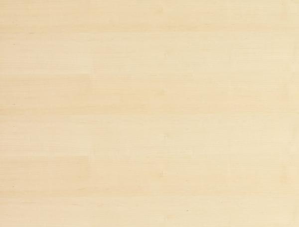 Edelfurnierte Platte europäischer Ahorn Träger Tischlerplatte Stab Qualität A/B geschliffen